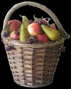 Fruitbedrijf de Hoenderik Tricht   Bed en Breakfast, Terras, Fietsverhuur, Agro-toerisme